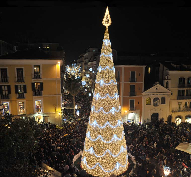 albero piazza portanova salerno